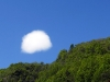Nuvoletta piemontese