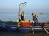 Consorzio pescatori del Polesine